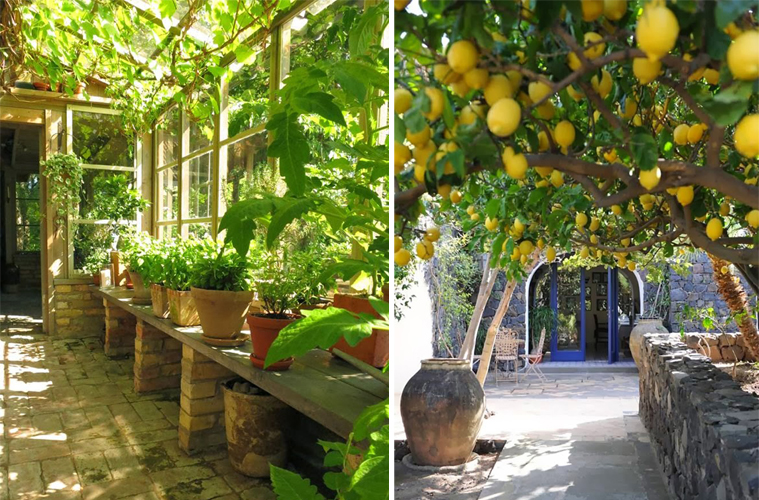 giardino mediterraneo 2
