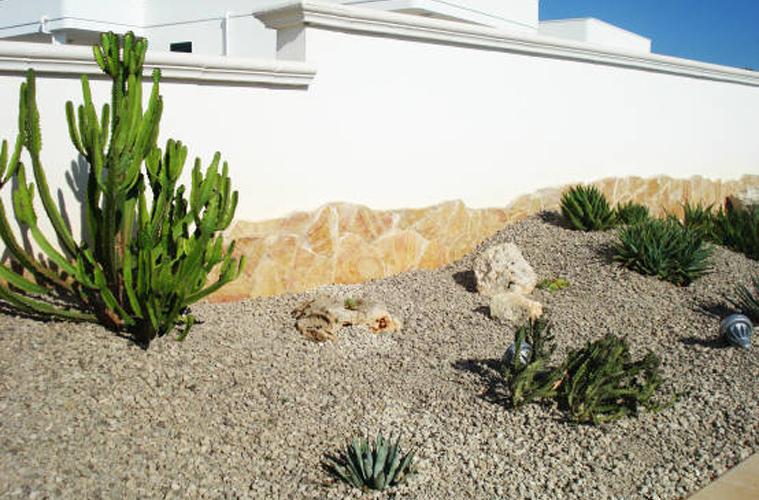 Giardino_succulente (6)