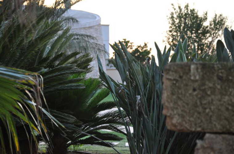 giardino (1)