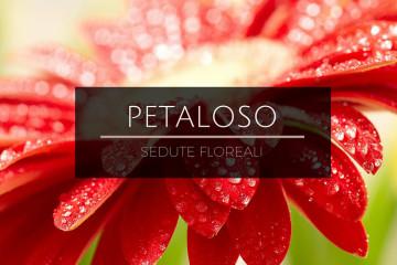 petaloso 1
