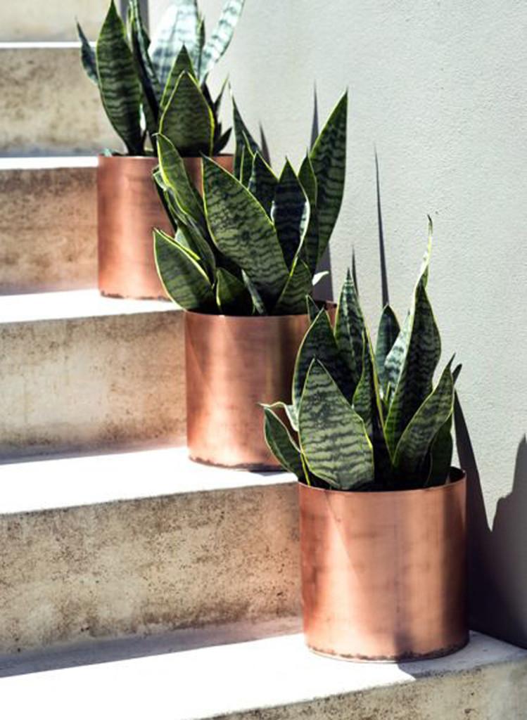 copper_interior-12